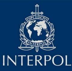 Interpol transmite ca au crescut atacurile cibernetice care exploateaza frica leagata de coronavirus