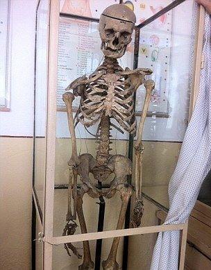 Intr-o scoala din Romania, elevii invata anatomie pe scheletul fostului director