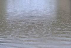 Inundatii in Romania: Zeci de localitati din 14 judete au fost afectate