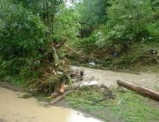 Inundatiile fac ravagii in Arges: Zeci de gospodarii afectate si oameni evacuati