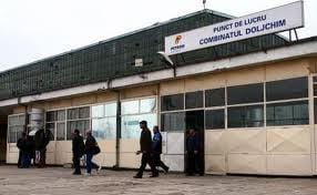 Ioan Niculae cere ajutorul Ministerului Economiei pentru a prelua Doljchim