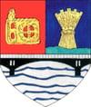 Istoria comunei Vladeni