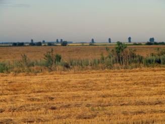 Italienii colonizeaza Romania - goana dupa terenuri si profit