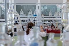 Japonezii au identificat niste compusi chimici care pastreaza pielea tanara si vindeca ranile