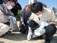 Japonia: Teste de radiatii, in scolile din regiunea Fukushima