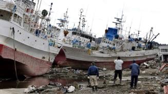 Japonia: Un cutremur de 6,2 grade pe scara Richter zguduie Fukushima