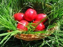 Joia Mare - de ce se vopsesc ouale si care este simbolistica lor