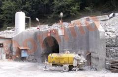 Jongleriile lui Borza au lasat in aer hidrocentralele din Defileul Jiului