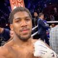 Joshua il invinge pe Ruiz in lupta anului din boxul mondial