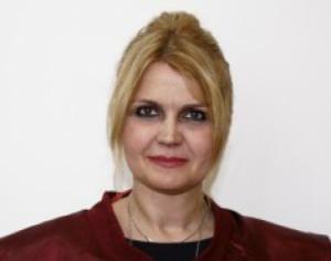 Judecatoare CCR, despre modalitatile de organizare a referendumului