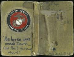 Jurnalul secret al unui veteran de razboi