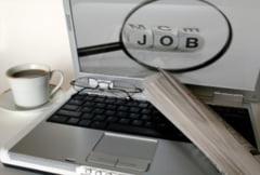 LOCURI DE MUNCA vacante in Alba Iulia, Campeni, Aiud, Blaj si Sebes la data de 21 octombrie 2014 - Vezi ce FIRME fac angajari