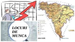 LOCURI de MUNCA in Alba: 365 de posturi disponibile in Alba Iulia, Blaj, Sebes, Aiud, Cugir si Campeni. FIRMELE care fac angajari