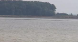 La Galati a aparut o insula pe Dunare - distractie pentru unii, griji pentru altii