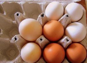 La ce poti folosi cojile de oua