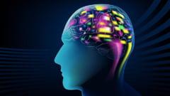 La ce varsta atinge creierul tau maturitatea