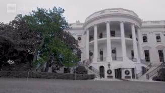 La ordinele Melaniei Trump, un copac-simbol din anii 1800 va fi taiat din fata Casei Albe