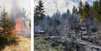 La sfarsitul saptamanii trecute: 31 de interventii ale pompierilor militari, din care sase incendii de vegetatie uscata