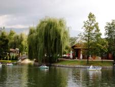 Lacul Ariana