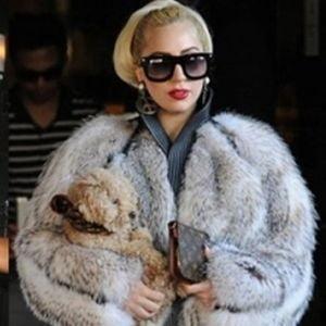 Lady Gaga si Rihanna, puse la zid de PETA
