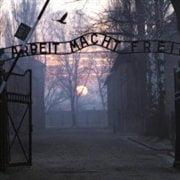 Lasati in libertate, hotii de la Auschwitz au disparut fara urma