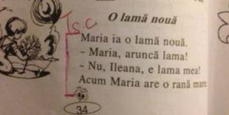 """Lectii delirante in manualele pentru clasa I: """"Maria ia o lama noua. Acum are o rana mare"""""""