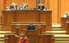 Legea care prevede eutanasierea maidanezilor, adoptata de Parlament