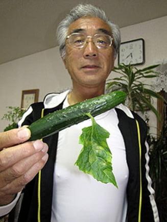 Legume si fructe mutante, efectul socant al radioactivitatii de la Fukushima
