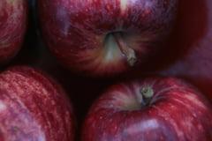Legumele si fructele cu cele mai multe pesticide - statistica pe 2013
