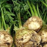 Legumele toamnei: Telina, leguma rasfatata de francezi