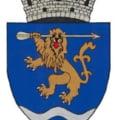 Leul cu ochii scoși, simbolul amuzant de pe noua stemă aprobată de Guvern a unui oraș din Transilvania