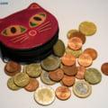 Leul ingenuncheaza in fata euro - Cat va mai tine declinul