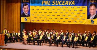Liberalii din Suceava fac cartile: PDL are nevoie urgenta sa faca parte din PNL, altfel...