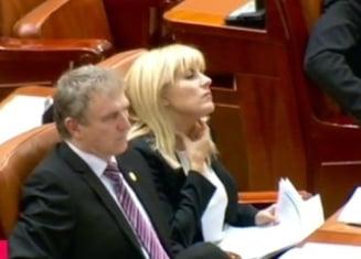 Libertatea Elenei Udrea, la mana Parlamentului - Marii absenti de la votul decisiv