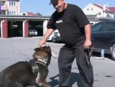 Licitatie mai putin obisnuita: 7 caini politisti ies la pensie si isi cauta stapani