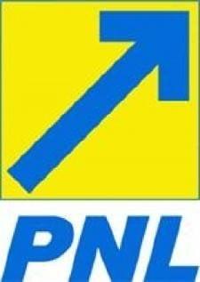 Liderii PNL Cluj sustin ca nu il cunosc pe interlopul Magurean
