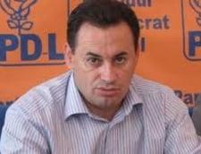 Liga penala a PDL (Opinii)
