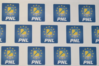 Lista candidatilor PNL la europarlamentare, deschisa de Rares Bogdan, a fost votata de BEx al PNL