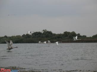 Litoralul romanesc va fi largit - sute de mii de tone de nisip aduse din Marea Neagra