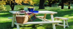 Loc pentru picnic, aproape de Vama Mocanasu