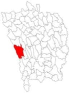 Localitatea Puiesti - Vaslui