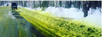 Locuitorii unui oras din Rusia s-au trezit inconjurati de zapada verde: Ce explicatii au primit (Foto)