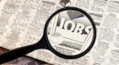 Locuri de munca disponibile in tot judetul. Lista completa