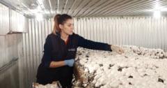 Locuri de munca pentru someri: 263 in Vrancea, 501 in strainatate