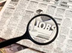 Locuri de munca vacante in judetul Alba, la data de 29 august 2014. Posturi de inginer, economist, operator ceramica si magaziner. Vezi OFERTA AJOFM