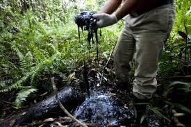 Lovitura pentru Chevron: Compania, condamnata definitiv pentru poluare in Ecuador