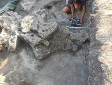 """Lucrarile la centura Capitalei, intarziate de asezarile dacice. Arheolog: """"Aici a fost sat"""""""