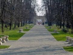 Lucrarile lui Brancusi, pe cand in patrimoniul UNESCO?