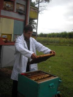 """Lumea """"dulce"""" a domnului Cristinel, un apicultor din inima Moldovei - Fotoreportaj"""