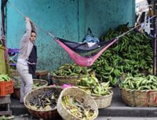 Lupte de strada cu zeci de morti in Nicaragua, dupa ce regimul Ortega a redus pensiile si a crescut contributiile